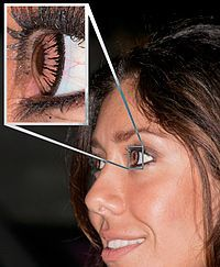 Contact lens -   A woman wearing a cosmetic type of contact lenses; the enlarged section of the image shows the grain produced during the manufacturing process. Curving of the lines of printed dots suggests these lenses were manufactured by printing onto a flat sheet then shaping it.  https://en.wikipedia.org/wiki/Contact_lens