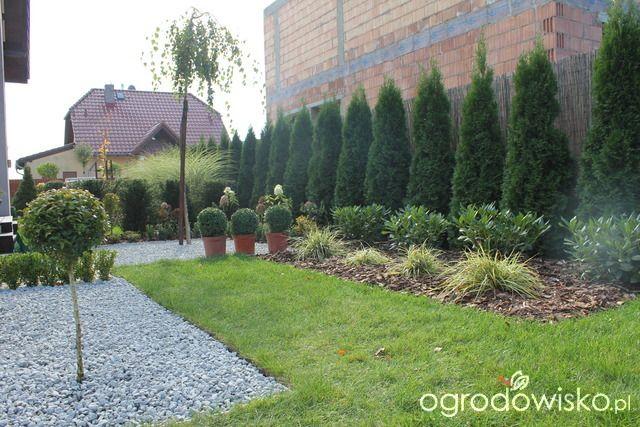 Przedwiośnie ogrodu..:) - strona 63 - Forum ogrodnicze - Ogrodowisko