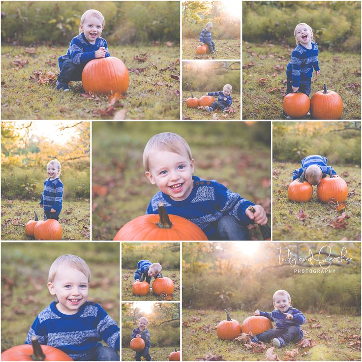 Toddler Fall Photo Session {Family Photography | Colwood, B.C.} » Indy & Feather Photography | Victoria, B.C. Photographer Specializing in Family, Maternity and Newborn Photography