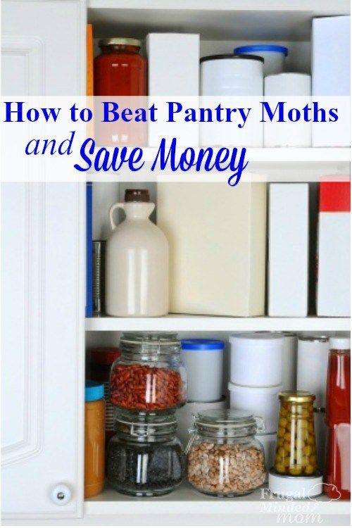 Moths invaded your kitchen?  Here's how you can beat them and save money in the process.