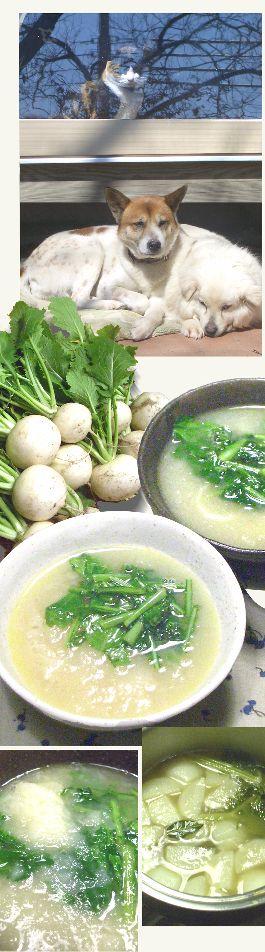 陽だまりのカブのスープ : ばーさんがじーさんに作る食卓 皮をむいたカブを四つ割に。バターを熱した鍋でカブを炒め、とりガラスープを500ccほど注いで、セロリ、パセリ、ローリエを加えて煮立て、アクをきれいにとって20分煮ます。  カブがやわらかくなったら、泡立て器でざらっとした感じが残るていどにつぶし、塩で味を調えて器に注ぎます。