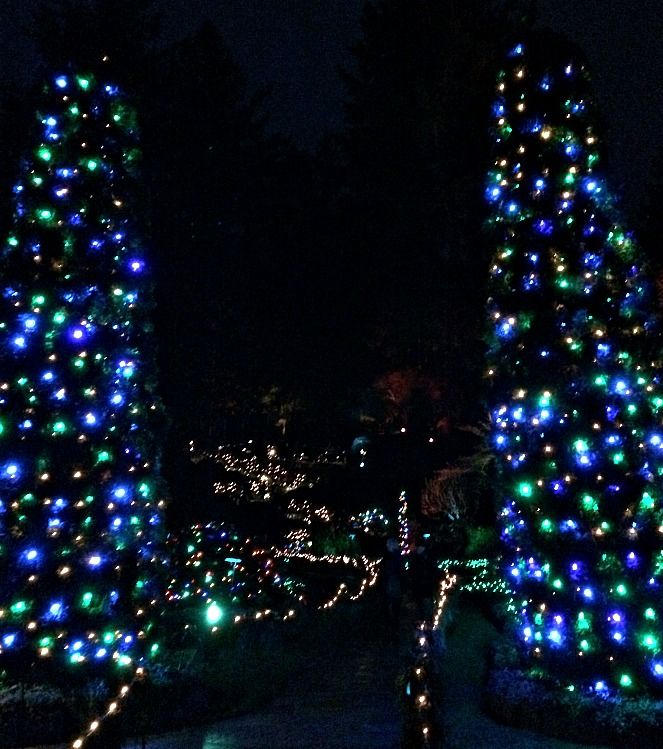 Butchart Gardens in Victoria, BC at Christmas! #christmas #butchartgardens #victoriabc