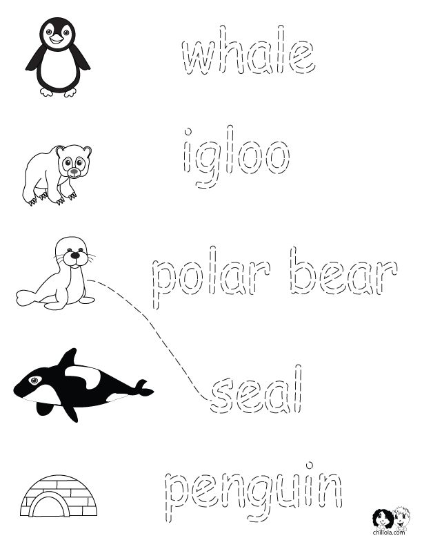 winter animals worksheets english for children french for children german for children. Black Bedroom Furniture Sets. Home Design Ideas