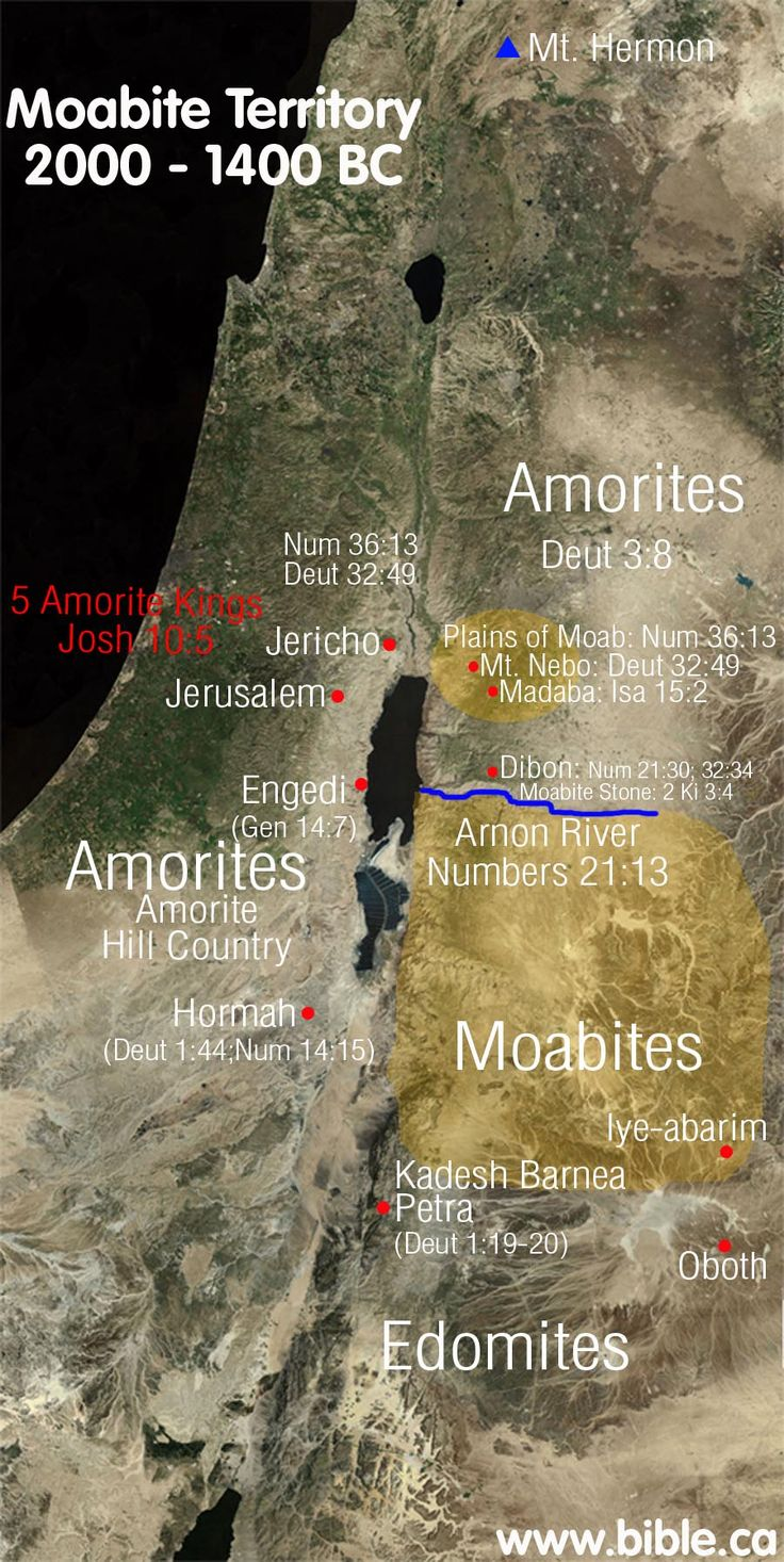 The Amorites were descendants of Canaan: Gen. 10:15-16; 1 Chron 1:13-14.  At the time of Abraham 2000BC, the Amorites lived in Hazazon-tamar Genesis 14:7 (which is also known as Engedi: 2 Chron 20:2. Engedi is a large active oasis on the western shore of the Dead Sea directly across from the Arnon River.  The Amorites were likely the largest of the 7 nations that God displaced for Israel out of Canaan. Gen 15:16; ""