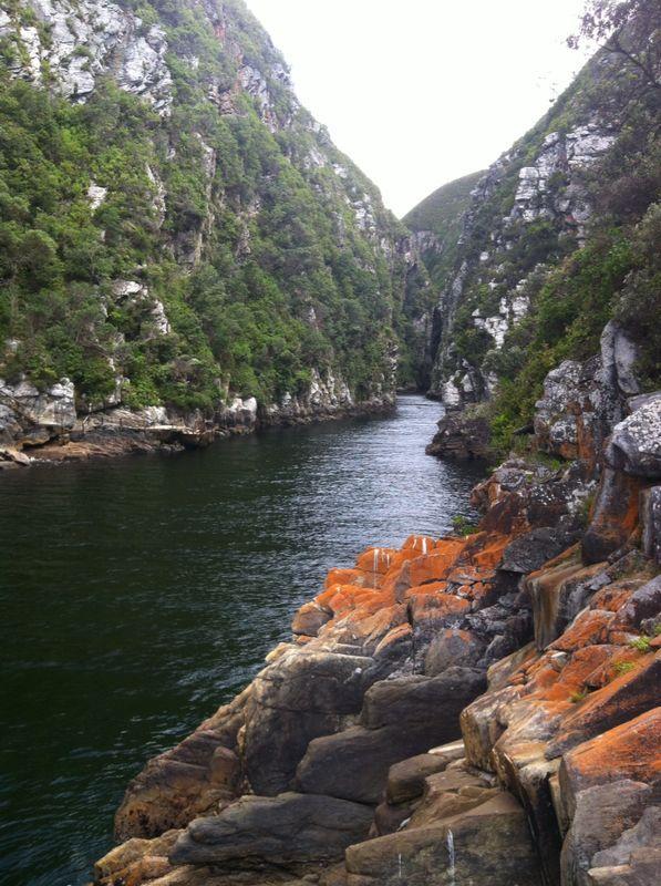 Tsitsikamma National Park, Western Cape, South Africa.