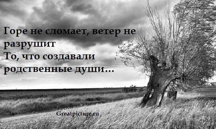 Красивое стихотворение: «Если вас нежданно вдруг толкнули в спину»