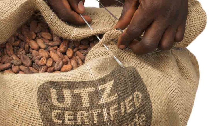 utz-certified-vanzeek-cocoa. Reasons why I MUST quit buying cheap chocolate made by slave laboring children! Soooo soooo sad!