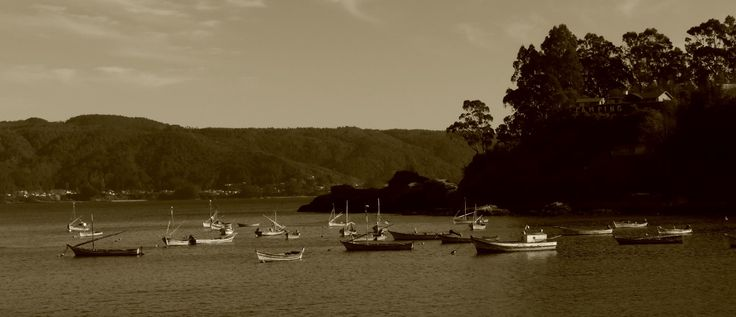 Fishing boats #2