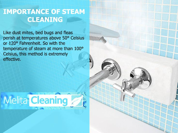 Importance of Steam Cleaning - Like dust mites, bed bugs and fleas perish at temperatures above 50° Celsius or 120° Fahrenheit. So with the temperature of steam at more than 100° Celsius, this method is extremely effective.