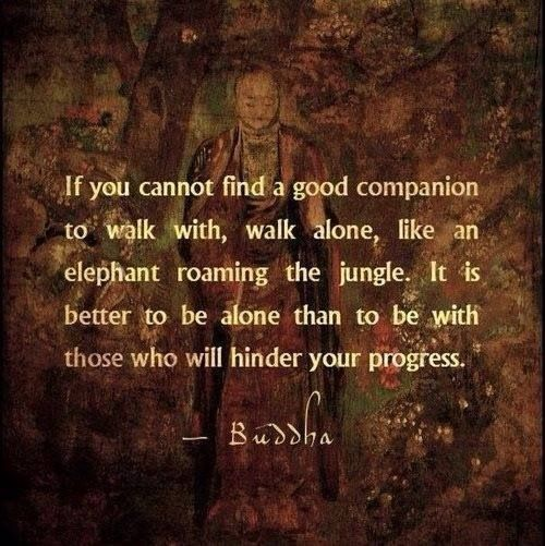"""If you cannot find a good companion to walk with, walk alone, like an elephant roaming the jungle. It is better to be alone than to be with those who will hinder your progress."" - Buddha"