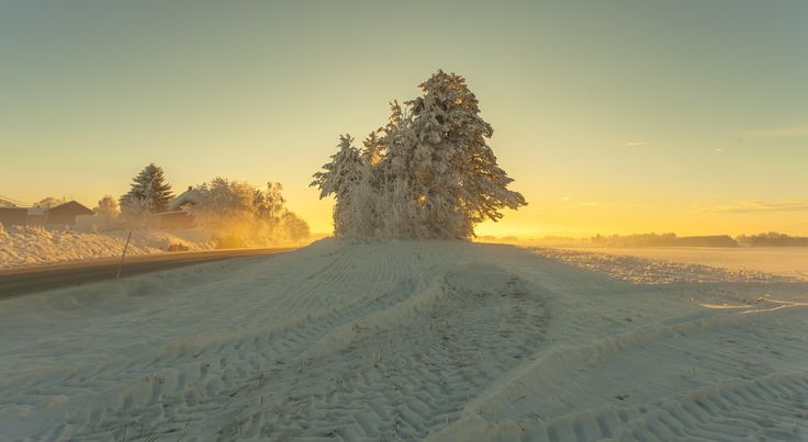 Photograph Winter Light by Rose-marie Karlsen on 500px