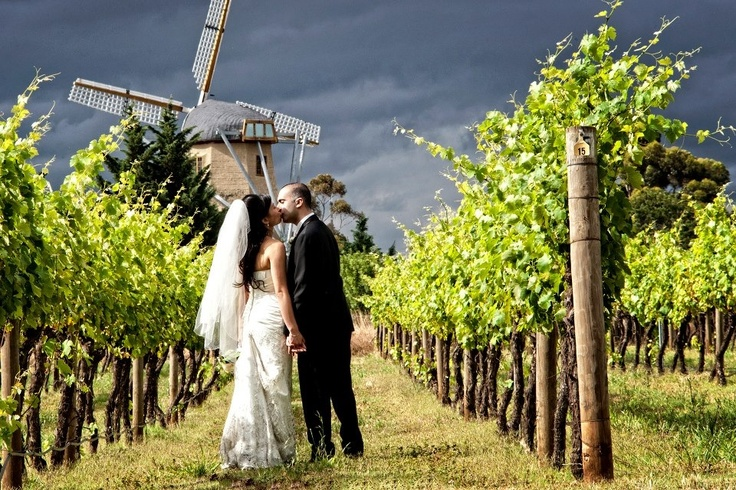 Melbourne Wedding Photography - Witchmount Winery Melbourne Con Tsioukis of Alex Pavlou Photography