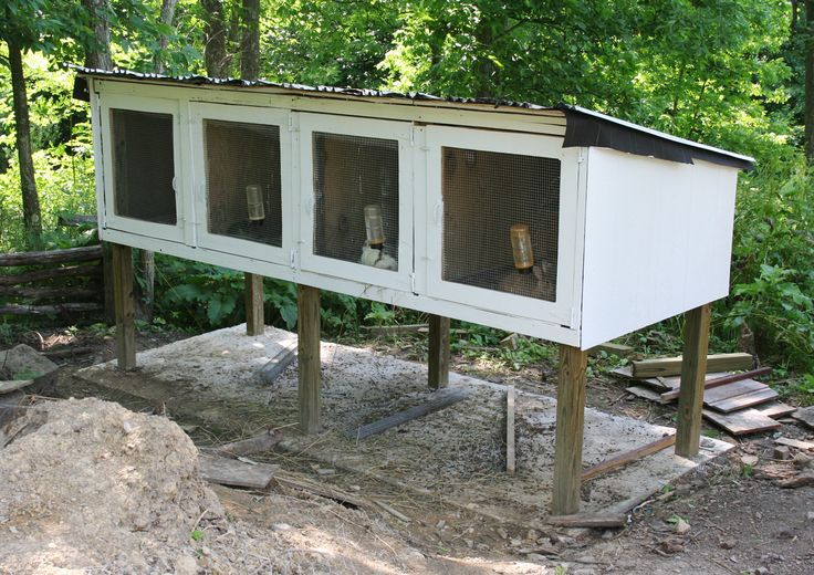 How to Build a DIY Rabbit Hutches in Four Easy Steps | Cross Roads Rabbitry