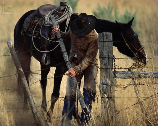 The one thing you can always be sure of....there will always be fences that need mendin'