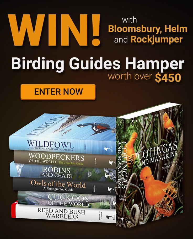 Enter to win this amazing Bloomsbury Hamper of top class Birding ID & Photographic Guides by Helm! All you have to do is fill out the form over here: http://www.rockjumperbirding.com/competitions/bloomsbury-book-hamper-competition-2016/, and you will stand a chance to win this hamper worth over $450.00!