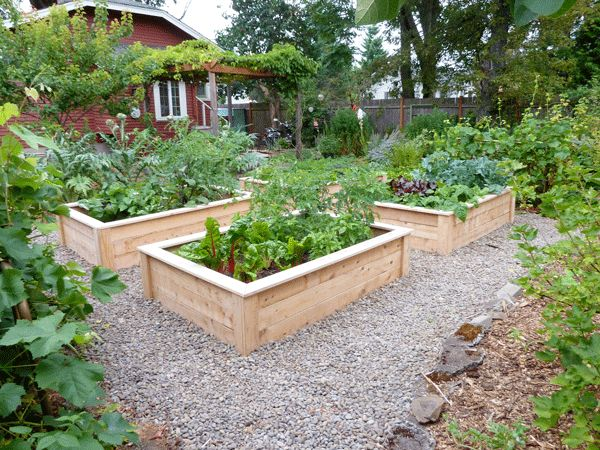 Designing A Vegetable Garden With Raised Beds best 25 raised bed kits ideas on pinterest raised garden bed kits garden bed and cedar raised garden beds Love These Raised Beds Im Thinking The Gravel Might Be A Wee Bit Tidier Than My Bark Cabin Gardening Pinterest Raised Bed And Raising