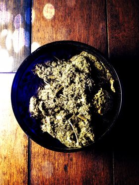 Witches Herbs Mugwort Used as a sacred smoking or smudging herb for protection or divination. It is safe to smoke (as safe as smoking anything is) by itself, mixed with tobacco, in a ritual context & enhances astral projection, lucid dreaming & altered states of consciousness.