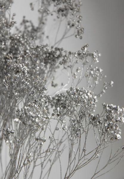 Metallic Silver Broom Bloom 3 oz. bunch (20 branches) $9.69 Filler Flowers
