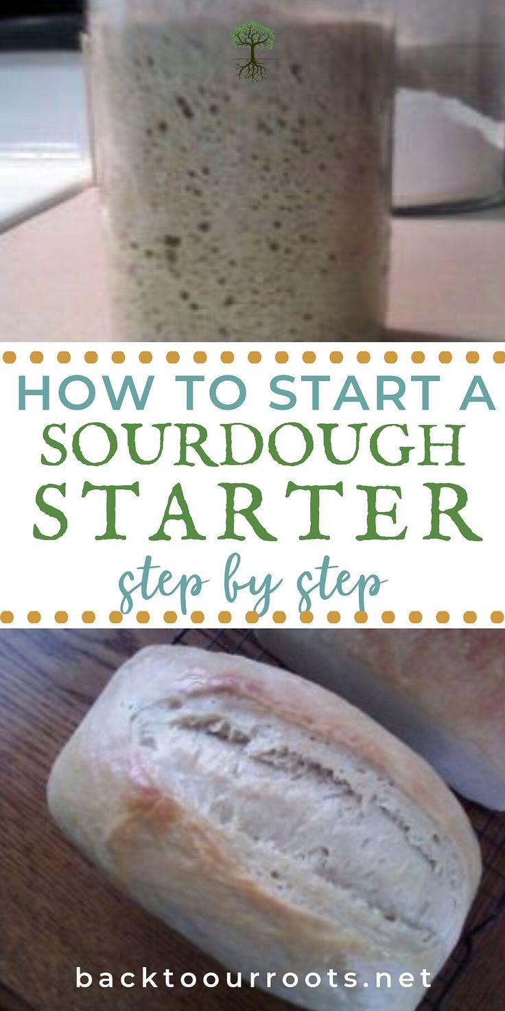 How to Start a Sourdough Starter for Baking Sourdough at