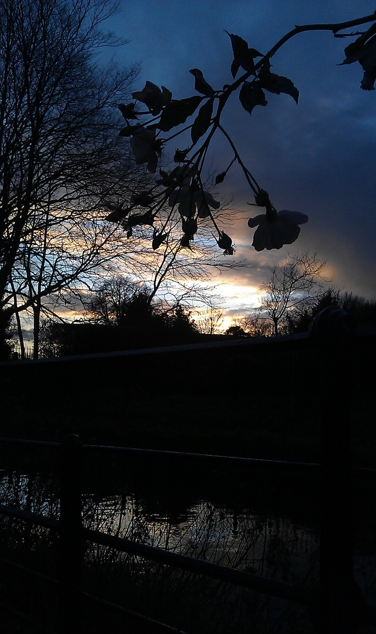 Sunset by the New River Loop, Enfield Town.