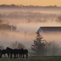 125 Best Images About Morning Fog On Pinterest Lakes