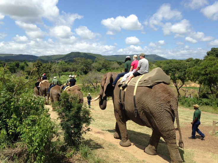 The Professional private Safari Photography Team spent some special time interacting with the Elephants at Elephant Whisperers.
