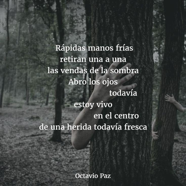 Poemas de octavio paz 5