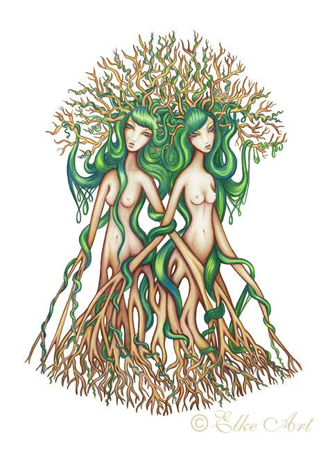 Medium Elke Art Print  A4  297mm X 210mm  Twin Trees by elkeart