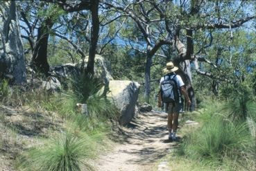 Walking on Magnetic Island. Photo courtesy of Tourism Queensland.