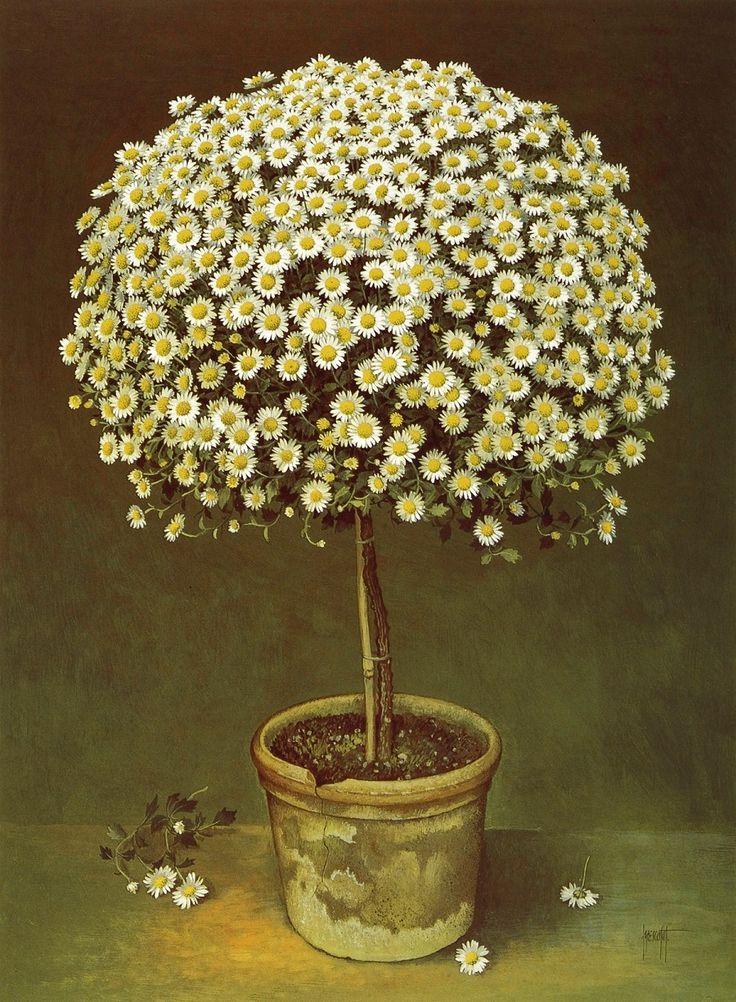 Jose Escofet (b. 1930) — The Daisy Tree, 1990 (900x1226)