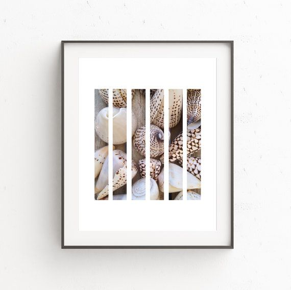 Sea Shell Print, Seashell Decor, Beach Shells Art, Sea Shells, Beach Photography, Beach Decor, Printable Decor, Nautical Decor, Download