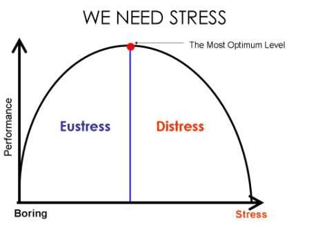 147 best  Stress  images on Pinterest Psych, Stress and Health - stress management chart