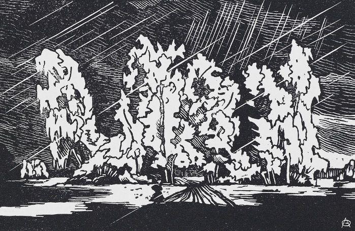 Группа деревьев около «Белой березы» (700x455, 193Kb) Пейзажи Павловска. Графика Остроумовой-Лебедевой А.П. (1871 — 1955)