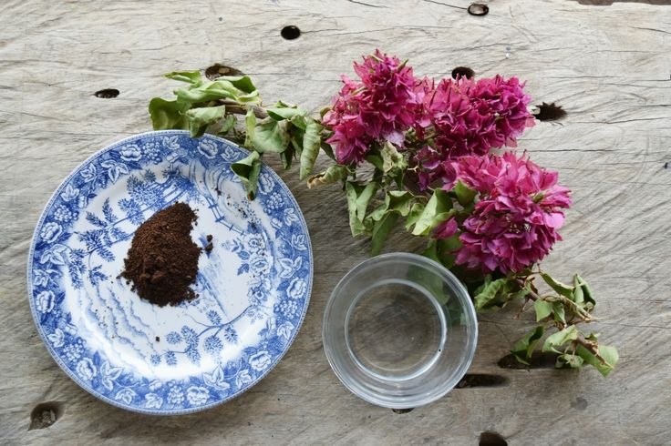 Coffee & Coconut oil Secret
