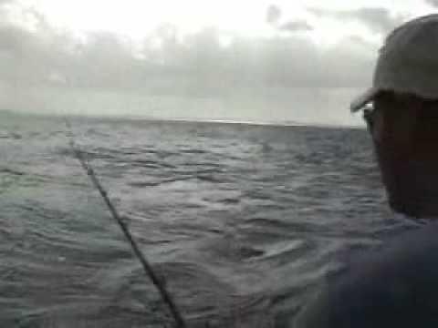 39 best cozumel charters images on pinterest cozumel for Fly fishing cozumel