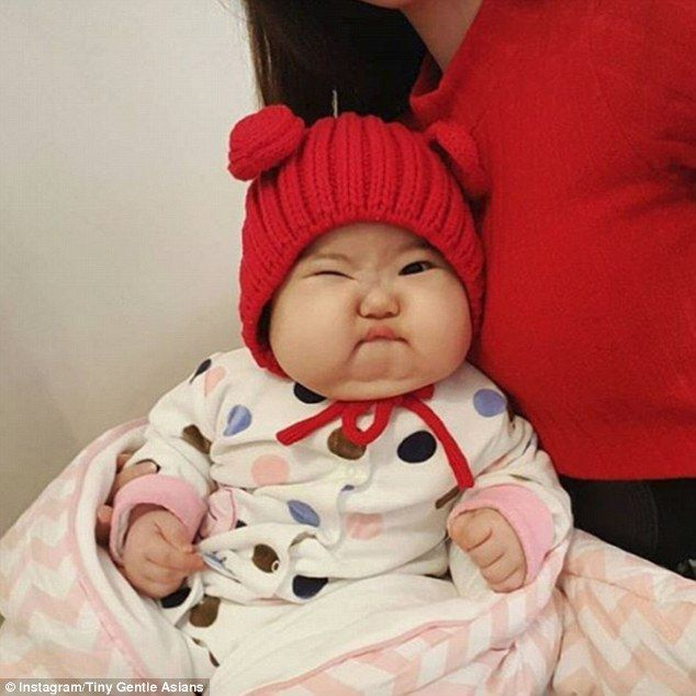 'Tiny Gentle Asians' Instagram account posts nothing but images of cute chubby babies | Daily Mail Online