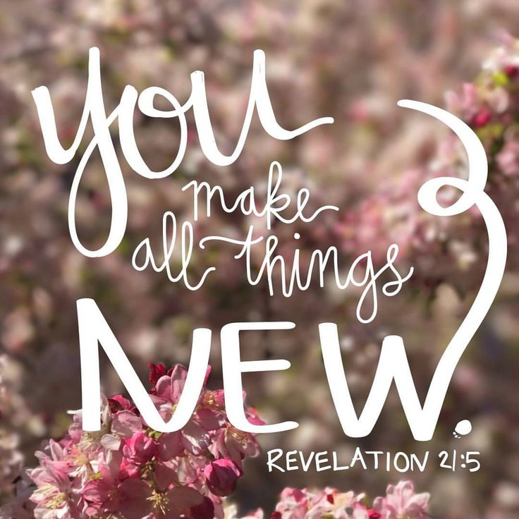 "Revelation 21:5 ""And He that sat upon the throne said, Behold, I make all things new. And He said unto me, Write: for these words are true and faithful."""