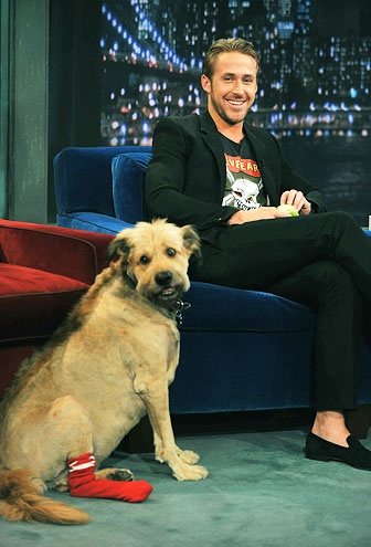 """""""He insists on it. Ten years ago I shaved a mohawk, you know, just for the summer, and then every time it started to grow out, he turned into a total jerk. And then I'd shave it back, and he'd turn into a nice guy again.""""   — Ryan Gosling on his dog George's unique hairstyle"""