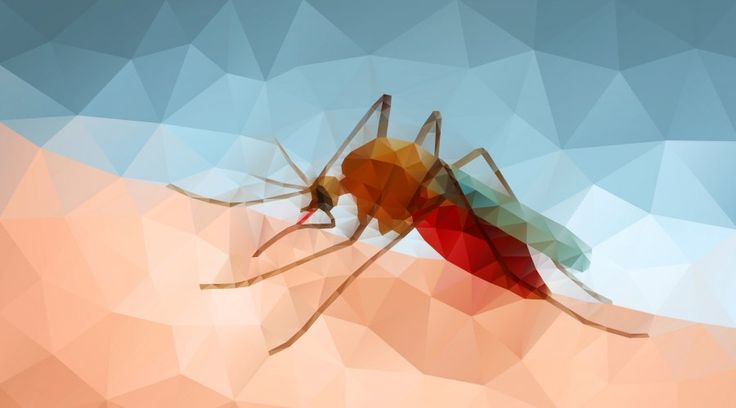 What is malaria? via @yourgenome https://www.yourgenome.org/facts/what-is-malaria