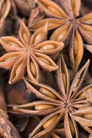 I love star anise - very good with roasted pork