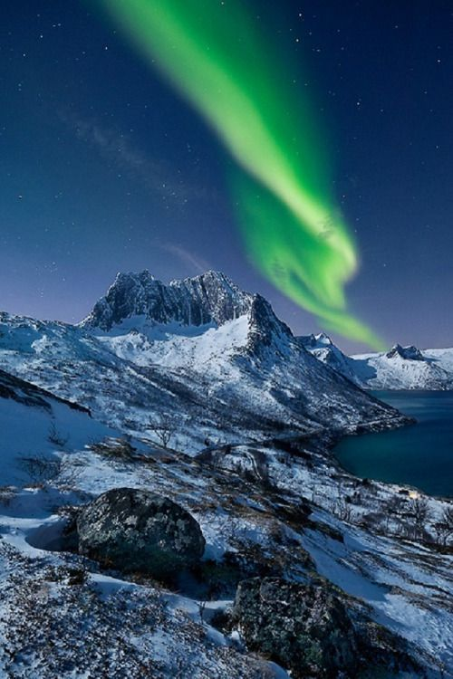 AURORA - Senja, Norway