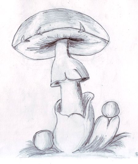 dibujos a lapiz - photo #21