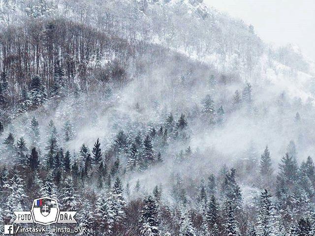 """So mysterious feeling. ❄️"" . 📷 #MalaFatra • FOTO DŇA od @fi_la11 • vybrala @nokristina • Tagujte svoje fotky #insta_SVK a nabudúce si možno vyberieme aj tú Vašu 😊 . #Slovensko #Slovakia #Słowacja  #Slowakei #europa #igraczech #your_world_live #instaslovakia #travelingram #bestplacestogo #nas_svet #mytinyatlas #letsgosomewhere #pureslovakia #thisisslovakia #aroundtheworld #europe #neverstopexploring #welltravelled #travelphotography ."