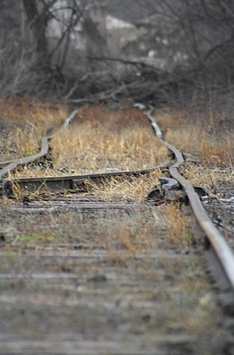 Abandoned Rail, End of the Line.. by Just Add Light