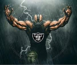 Image result for Raider Nation Cartoons