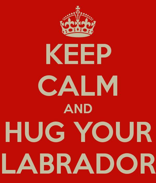 Hug your Lab:)