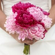 Powerful Pink Bridal Bouquet - Powerful Pink Bridal Bouquet > View Full-Size I... | Pink, Bouquet, Powerful, Purchased, Aud | B