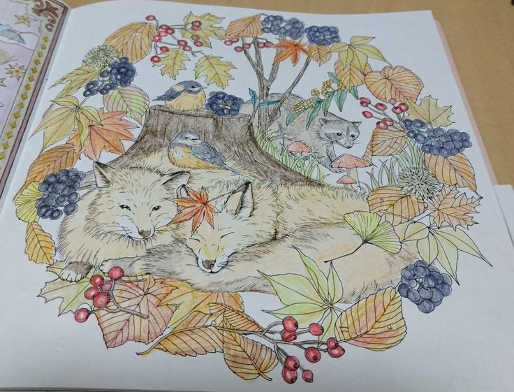1000 Images About Animal Coloring On Pinterest