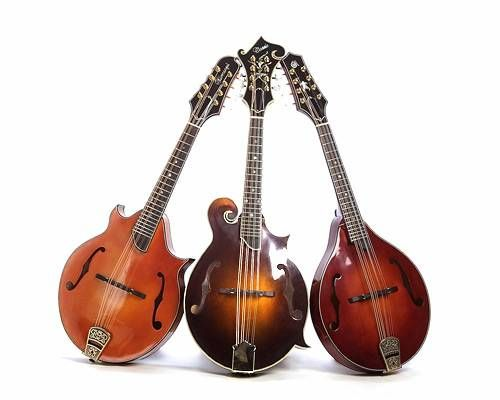 i would love to learn to play a mandolin well...been taking lessons for over a year...still trying
