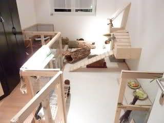 die besten 25 kaninchen spielzeug ideen auf pinterest. Black Bedroom Furniture Sets. Home Design Ideas